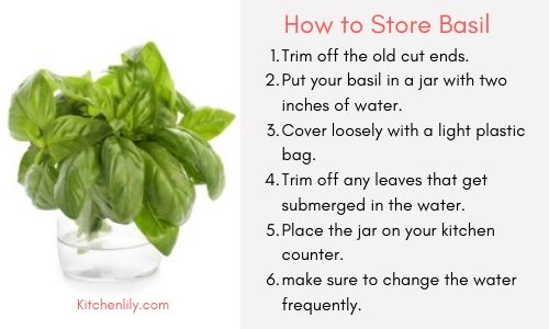 How to store basil and keep it fresh for long