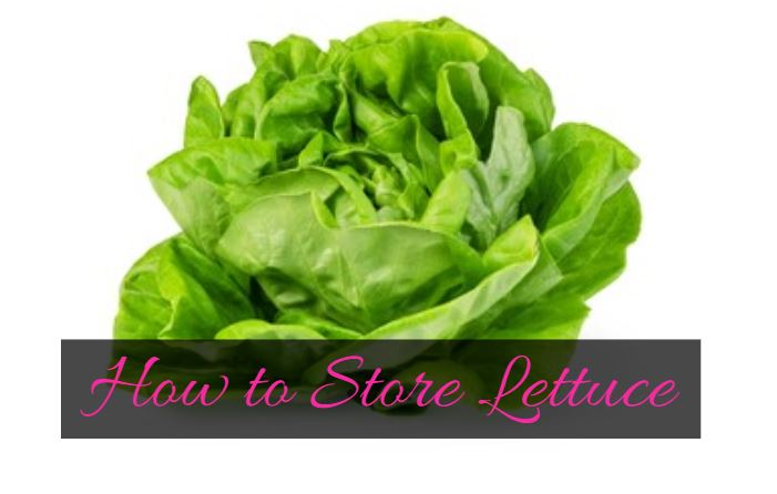 How to store lettuce and keep it fresh for long - fridge, freezer
