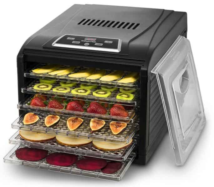 Gourmia GFD1650 Premium Electric Food Dehydrator Machine review