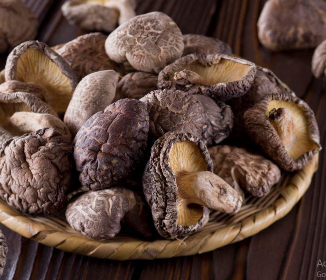 How to Dry Mushroom