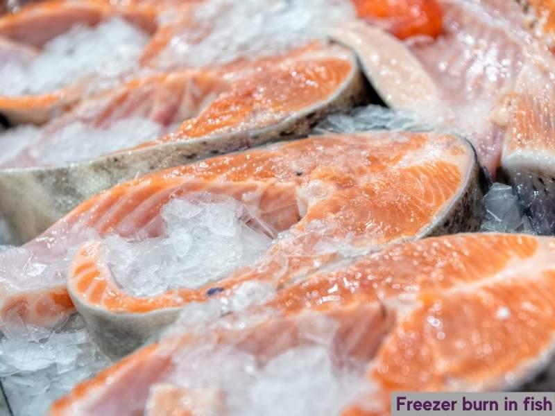 Freezer burned fish