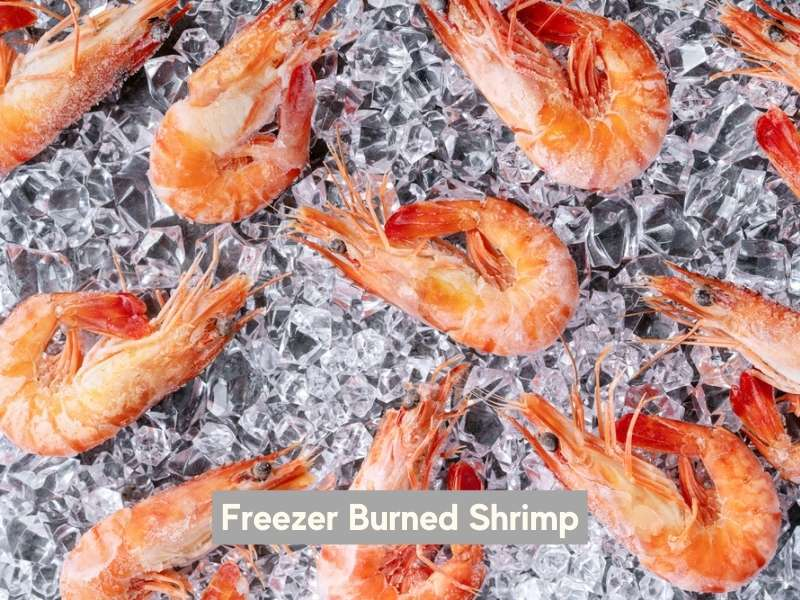Freezer burned shrimp
